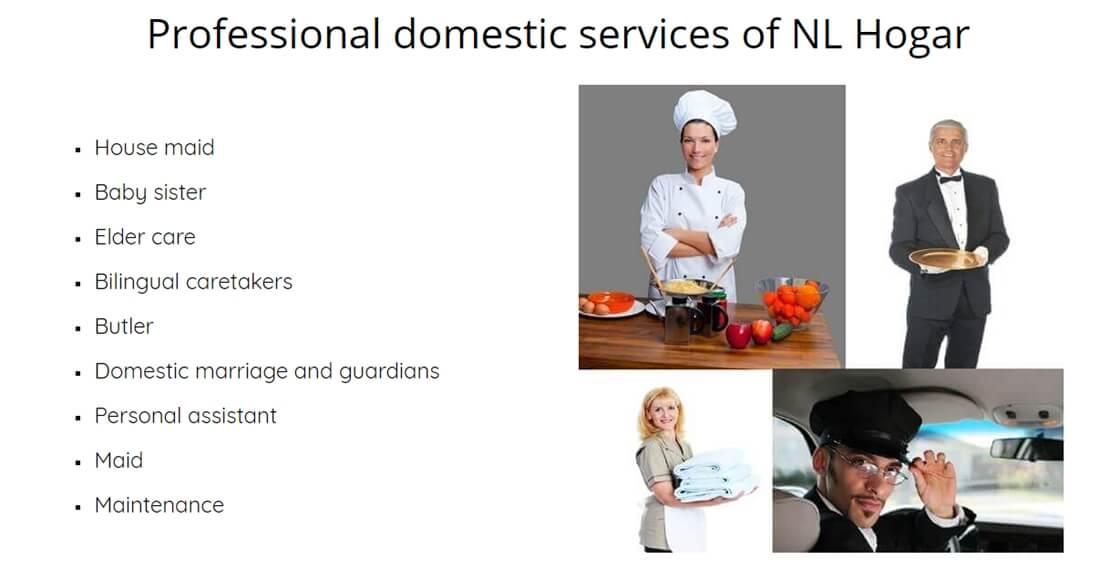 External domestic employees
